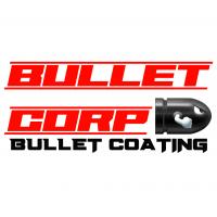 BCB Coating 100g